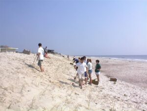 Volunteers help plant native vegetation for Amelia Island Dune restoration